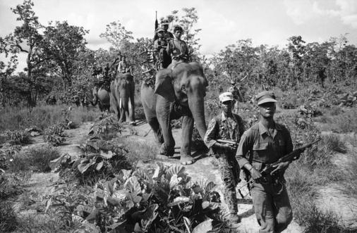 An American advised patrol plods through the Vietnamese jungle on June 27, 1964. Supplies and some of its personnel aboard the powerful, plodding elephants which are a form of native transport dating back centuries to Hannibal during the First Punic War.(AP Photo/Horst Faas)