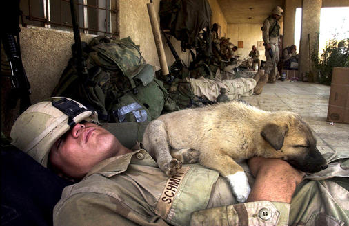 Marine Cpl. Gunner Schmitt, 23, from Janesville, Wis., and a puppy that the Marines had named Willie, both take an afternoon nap on the porch of an office building in an abandoned industrial complex where the Camp Pendleton 3rd Battalion, 1st Marines, have been living for the past five days in Baghdad, Wednesday, April 16, 2003. The puppy belongs to the population of stray dogs that also live in the complex. (AP Photo/North County Times/Hayne Palmour)