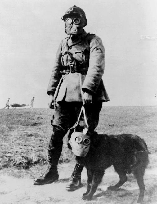 Equipment for the trenches. Date Created between 1914 and 1918, A French sergeant and a dog, both wearing gas masks, on their way to the front line. Photo by National Photo Company Collection.