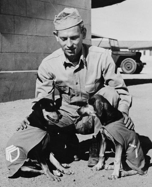 """Private First Class Norman Diamond of Brooklyn, New York gives a congratulatory pat to """"Staff Sergeant Basic"""" and """"Private First Class Adler,"""" who have just received promotions under authority of DL (Dog Land) regulation 0000-900. They are mascots of a U.S. Signal Service company somewhere in India. 1942 Farm Security Administration - Office of War Information Photograph Collection (Library of Congress)"""